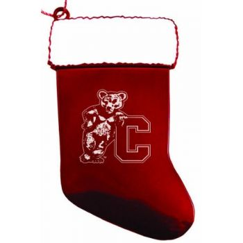 Cornell University - Christmas Holiday Stocking Ornament - Red
