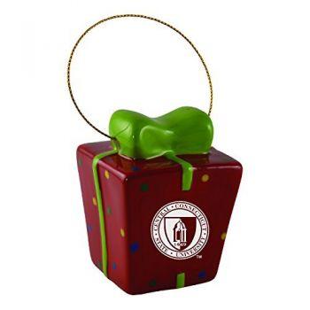 Central Connecticut University-3D Ceramic Gift Box Ornament