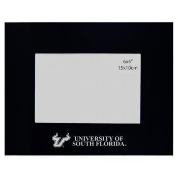 University of South Florida - 4x6 Brushed Metal Picture Frame - Black